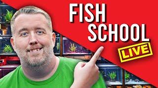 🔴 LIVE - Suฑday Fish School