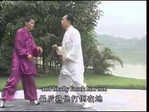 Traditional Shanxi Xingyi Quan Series Interlink Fist Of Yue Style Combat Skills Of Ba Fan Shou Watch