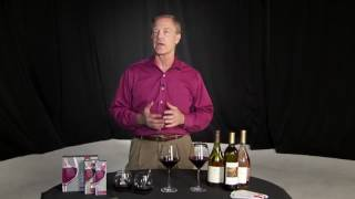 Wand removes sulfites from wine