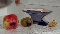 Otravný Pomeranč - Koláček Štěstí - Fénix ProDabing