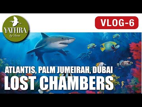 The Lost Chambers Aquarium | Atlantis, Palm Jumeirah, Dubai