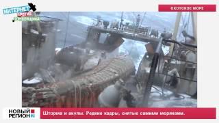 Шторма и акулы(ТВ-новости ИАА