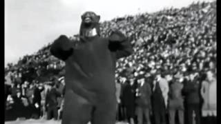 Creepy Chicago Bears mascot (PG warning)