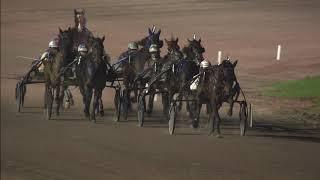 Vidéo de la course PMU PRIX SOLLEVELD TRANSPORT (MERWESTAAL TALENT CHALLENGE)
