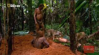 Амазонка. Дикий мир. 720p HD