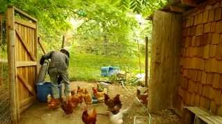 WWOOF is a priceless experience. :)