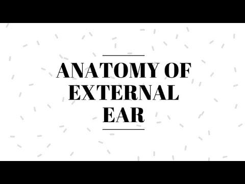 Anatomy of External Ear || Pinna || Tympanic Membrane || - YouTube