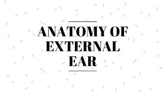Anatomy of External Ear    Pinna    Tympanic Membrane   