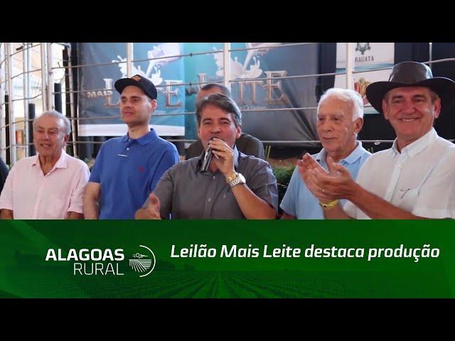 Leilão Mais Leite destaca produção de gir leiteiro e girolando do Nordeste