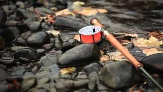 Ian Gordon's Two Minute Salmon Masterclass