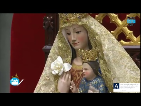 Papa Francisco: oración por la paz en Sudan y el Congo