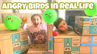 ANGRY BIRDS IN REAL LIFE GAME