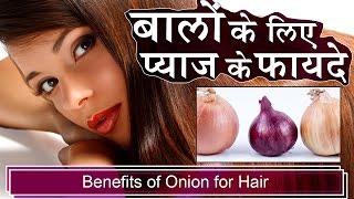 बालों के लिए प्याज के फायदे | Benefits of Onion for Hair | Hair Growth, Hair Fall, Long Hair Tips