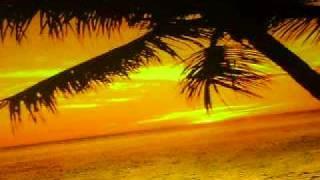 Strand mit Palme bei Sonnenuntergang
