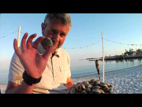 How to Do a Florida Seafood Boil