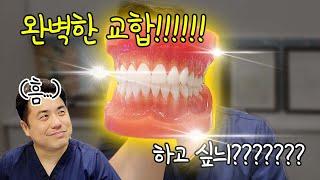 치아교정 완벽한 교합의…