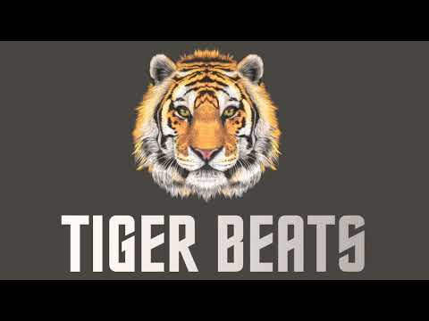 tiger-beats/audition-(prod-by-tiger-beats)