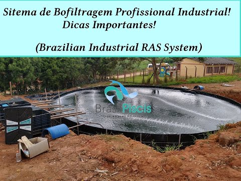 Instalação Padrão Biofiltragem Para Piscicultura Industrial E Qualidade De Mídia