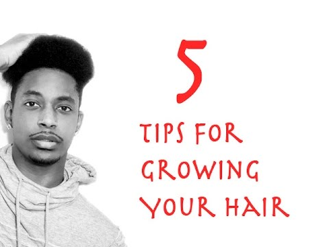 How To Grow Your Hair Faster And Longer   WINSTONEE