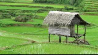 Nyidam Sari - Langgam