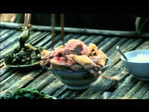 [Kinh điển] SinhMenh2006 -  Sinh Mệnh - sinh menh