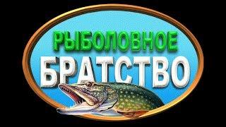 презентация рыболовного канала, DMITRY KANEV  ссылка в описании