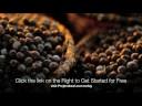 Acai Berry Diet - Updated 10/2011