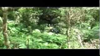 森林樹冠層探險_low