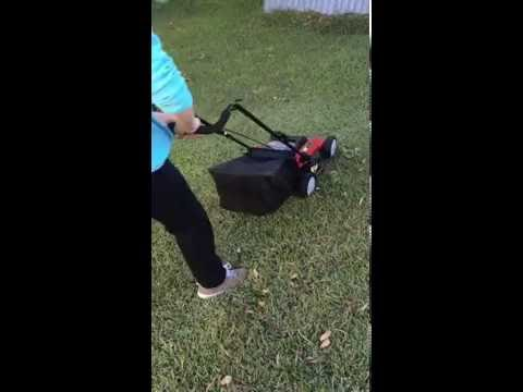Baumr Ag E-Force 360II Electric Lawnmower
