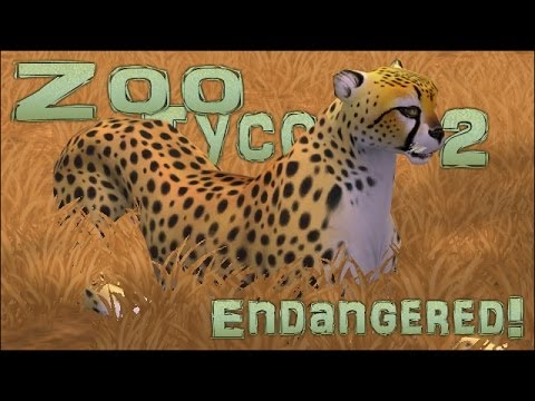 Endangered! Don't Race the Cheetah (You'll Lose) - Episode #7