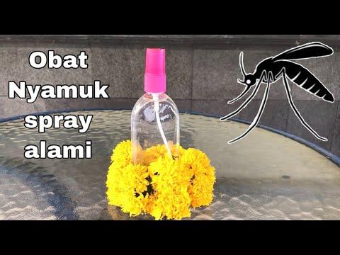 cara-membuat-obat-nyamuk-spray-alami