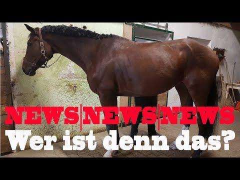 Unterwegs in Bayern | GANZ VIEL NEWS! | MA Chevaux De Sport