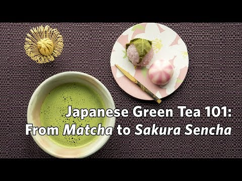 Japanese Green Tea 101: From Matcha to Sakura Sencha