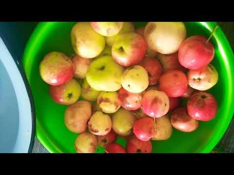 Очень вкусный компот из яблок!!!