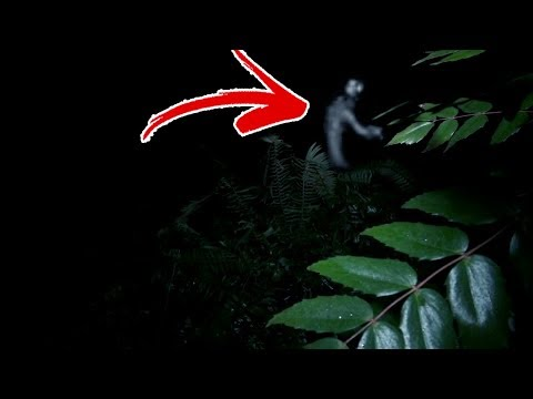 "hidden creepy trail on the ""666 Highway"".. (creepy)"