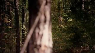 Клаус и Керолайн секс в лесу