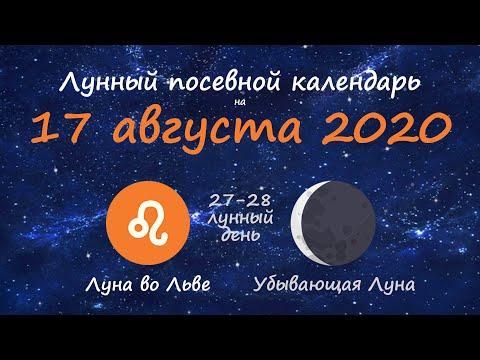 [17 августа 2020] Лунный посевной календарь огородника-садовода