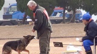 来年度の県警の嘱託警察犬を選ぶ審査会が1月28日、鹿児島市七ツ島2...