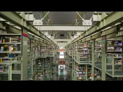 Un día en Biblioteca Vasconcelos