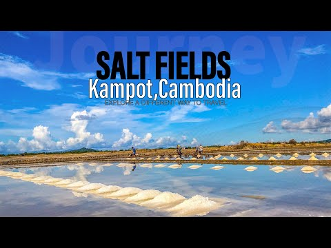 CAMBODIA: Salt fields in Kampot Province/ វាលអំបិល