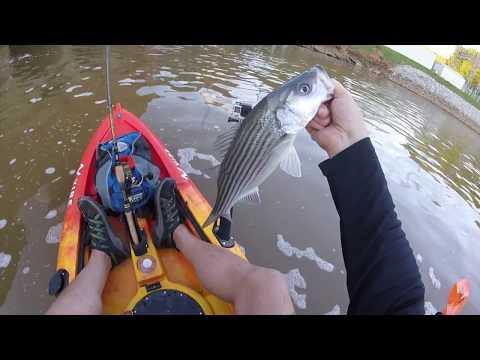 Morgan Falls Kayak Striper Fishing Clip