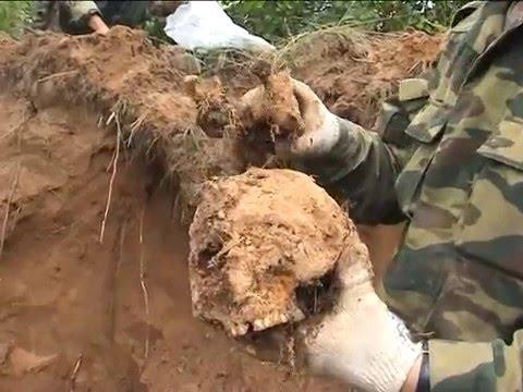 Поиск пропавших без вести солдат фильм №53