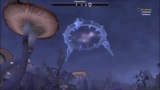 Elder Scrolls Online - A Quick Review