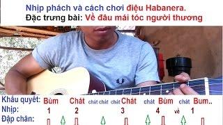 Tự học đàn guitar điệu Habanera ví dụ bài hát Về Đâu Mái Tóc Người Thương