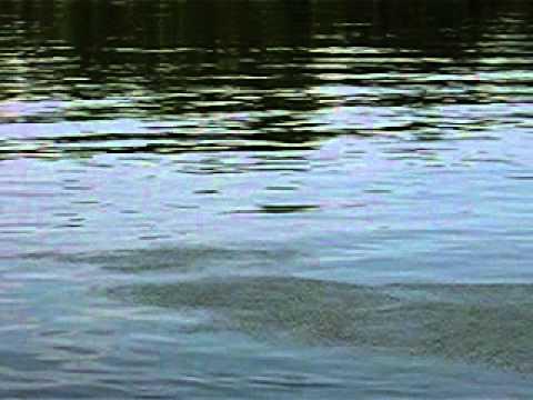 Duna Rejtett titkai