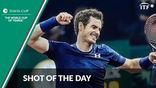 Great Britain wins the Davis Cup