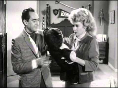 The Beverly Hillbillies - Season 1, Episode 11 (1962) - Elly Races Jethrine - Paul Henning