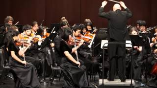 Contrasts in e minor, Feese - Troy Concert Orchestra, MSBOA District Festival, 3/15/2014