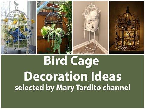 Bird Cage Decoration Ideas