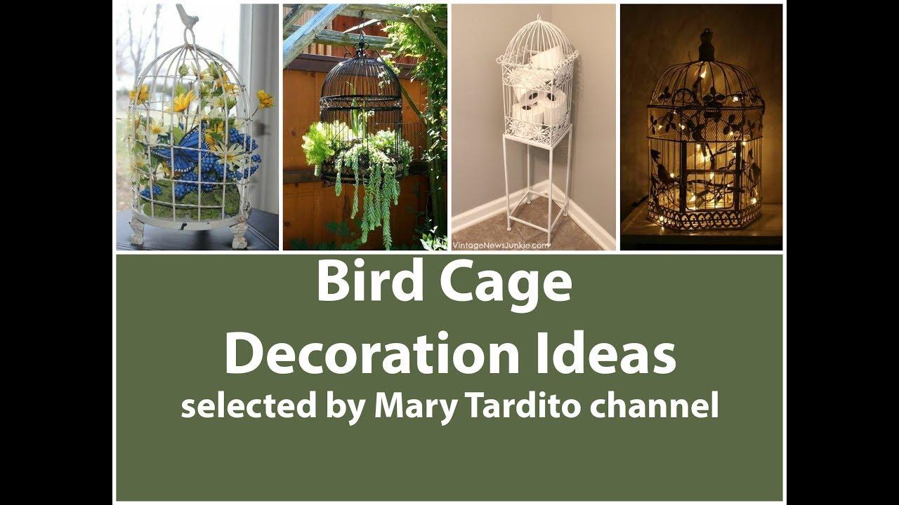 Bird Cage Decoration Ideas Youtube